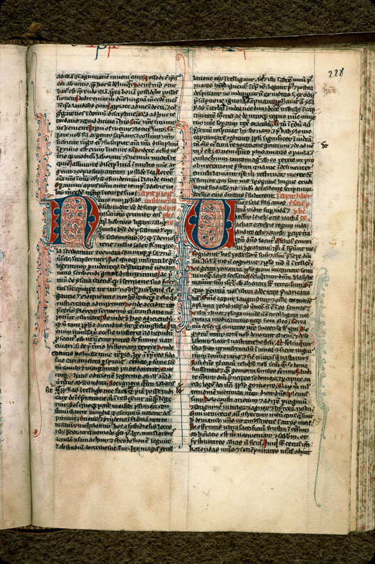 Carpentras, Bibl. mun., ms. 0001, f. 228