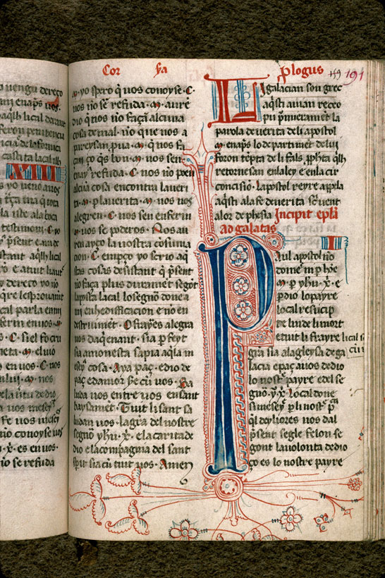 Carpentras, Bibl. mun., ms. 0008, f. 191