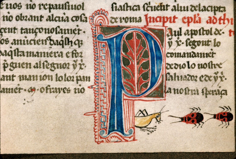 Carpentras, Bibl. mun., ms. 0008, f. 210