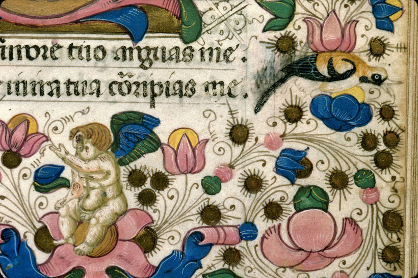 Carpentras, Bibl. mun., ms. 0053, f. 146 - vue 3
