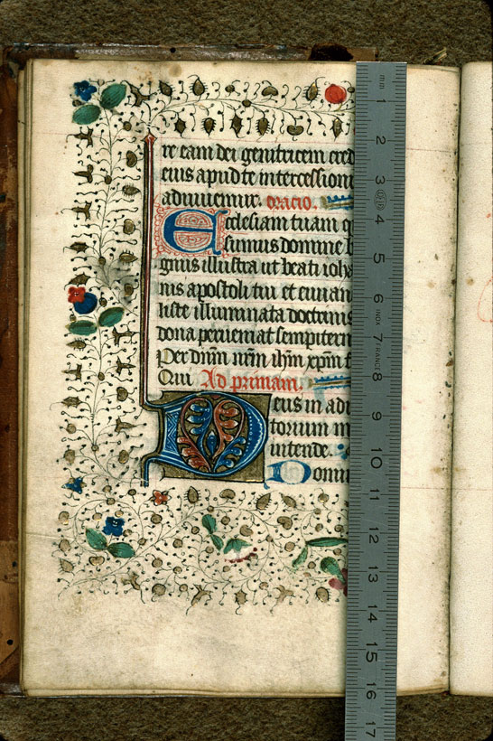 Carpentras, Bibl. mun., ms. 0056, f. 050v - vue 1