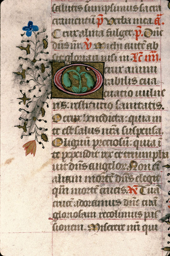 Carpentras, Bibl. mun., ms. 0069, f. 371v