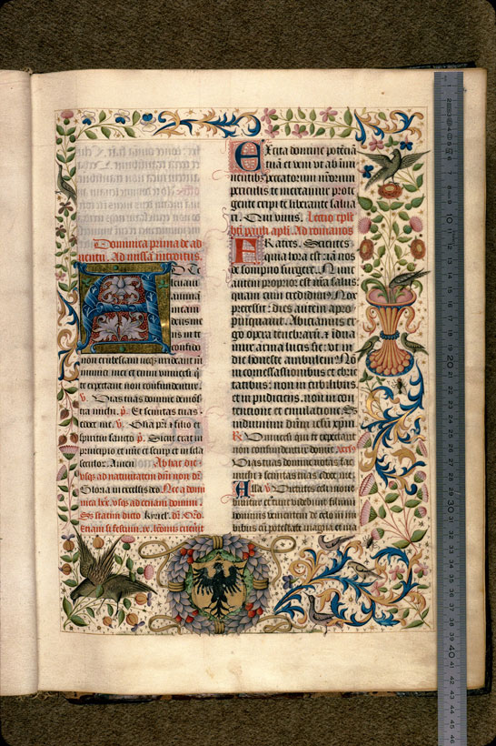 Carpentras, Bibl. mun., ms. 0082, f. 014 - vue 1