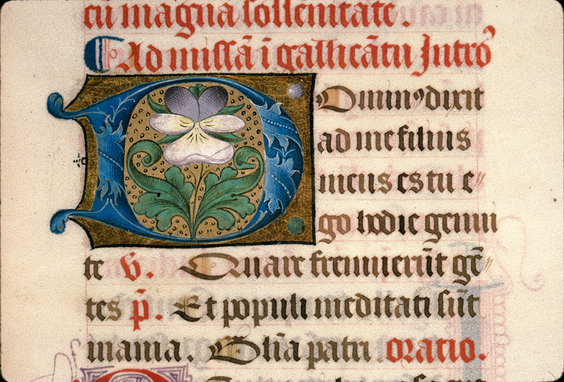 Carpentras, Bibl. mun., ms. 0082, f. 024 - vue 2