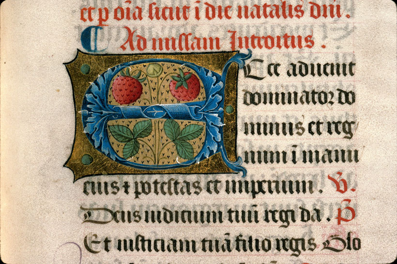 Carpentras, Bibl. mun., ms. 0082, f. 038