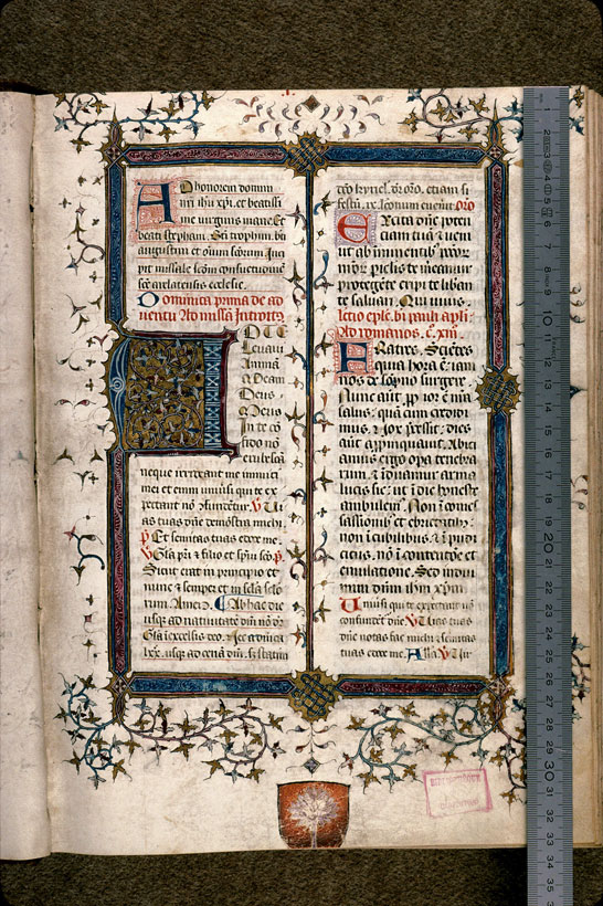 Carpentras, Bibl. mun., ms. 0087, f. 001 - vue 1