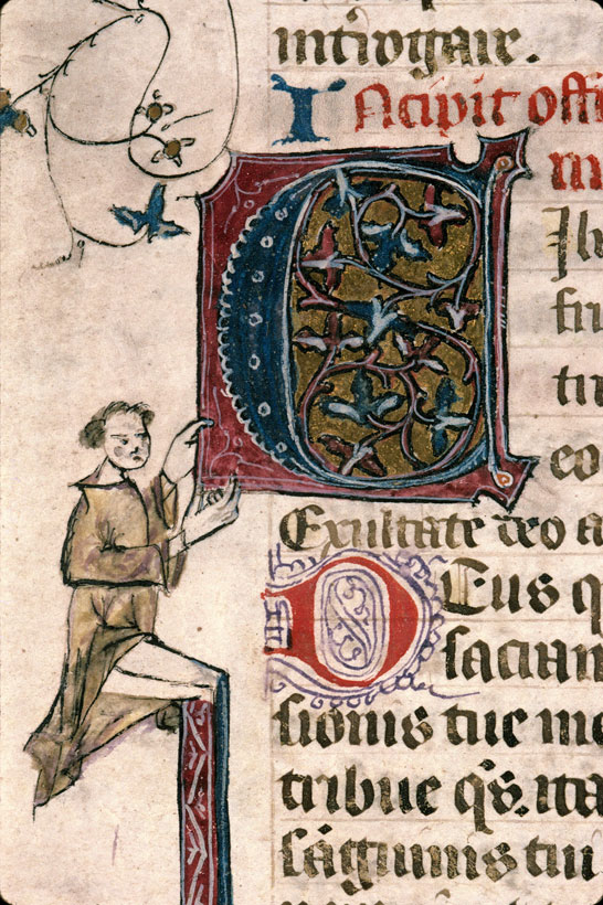 Carpentras, Bibl. mun., ms. 0087, f. 126 - vue 2