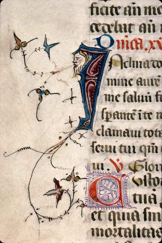 Carpentras, Bibl. mun., ms. 0087, f. 145v - vue 2