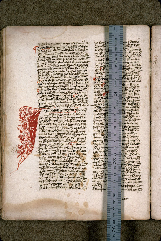 Carpentras, Bibl. mun., ms. 0287, f. 084v - vue 1