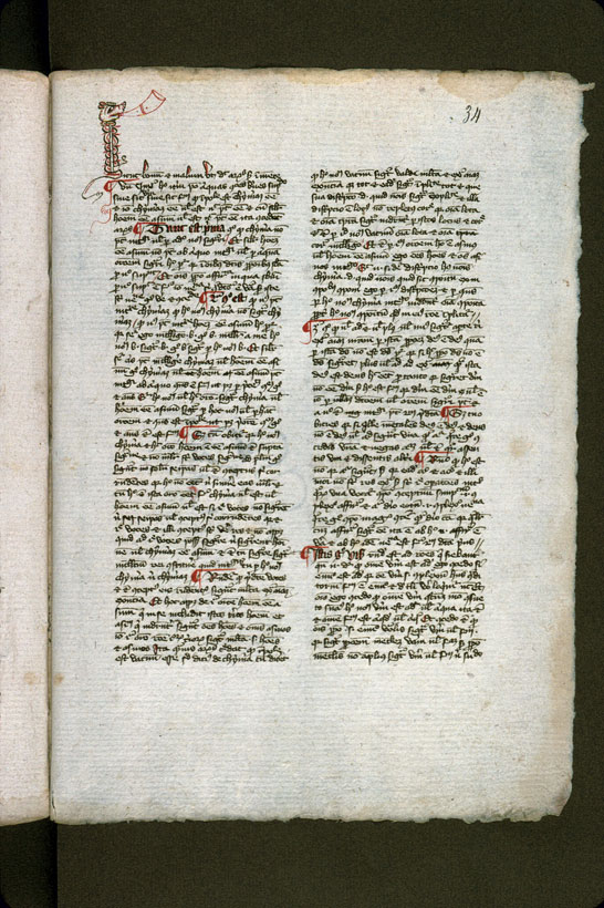 Carpentras, Bibl. mun., ms. 0293, f. 034 - vue 2