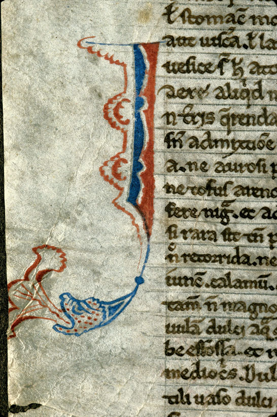 Carpentras, Bibl. mun., ms. 0313, f. 001v