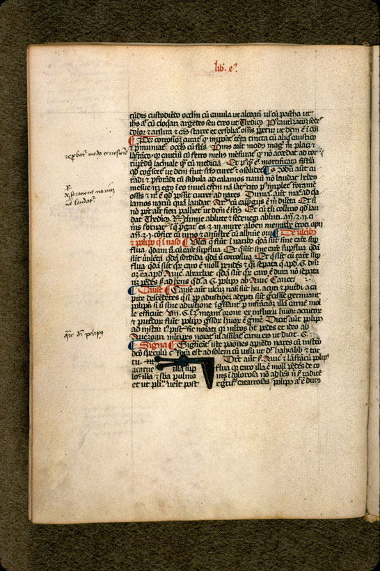 Carpentras, Bibl. mun., ms. 0322, f. 117v - vue 1