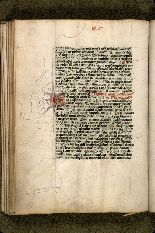 Carpentras, Bibl. mun., ms. 0322, f. 166v