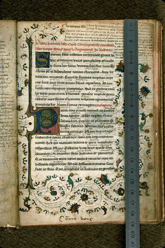 Carpentras, Bibl. mun., ms. 0367, f. 002 - vue 1