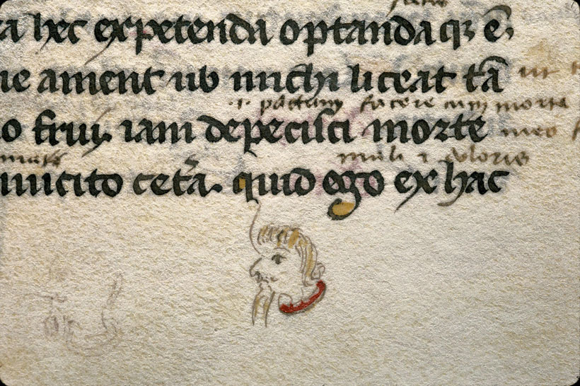 Carpentras, Bibl. mun., ms. 0367, f. 134
