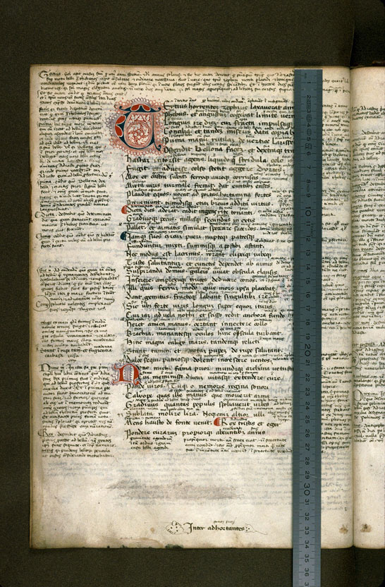 Carpentras, Bibl. mun., ms. 0369, f. 018v - vue 1