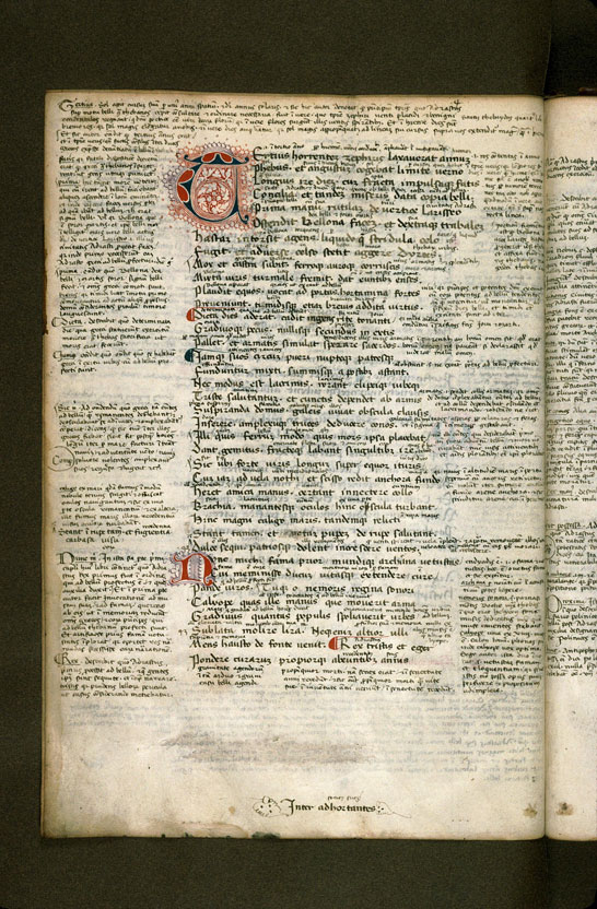 Carpentras, Bibl. mun., ms. 0369, f. 018v - vue 2