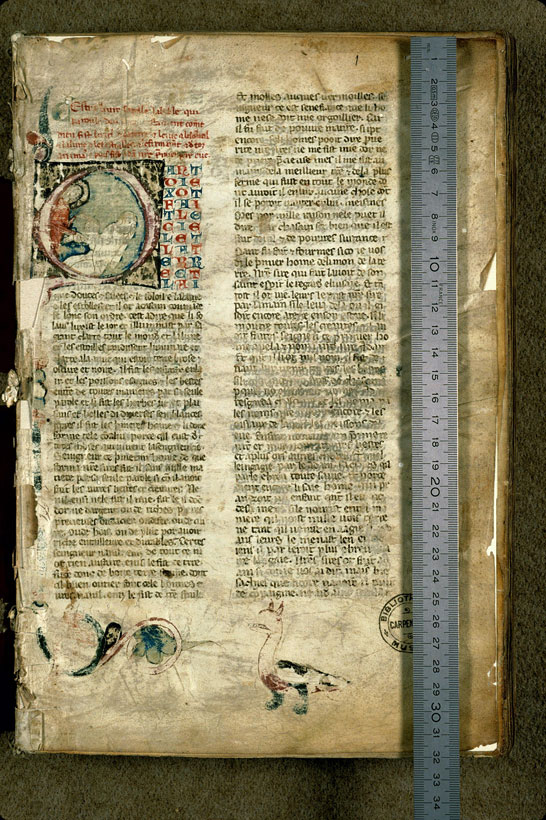 Carpentras, Bibl. mun., ms. 1260, f. 001 - vue 1