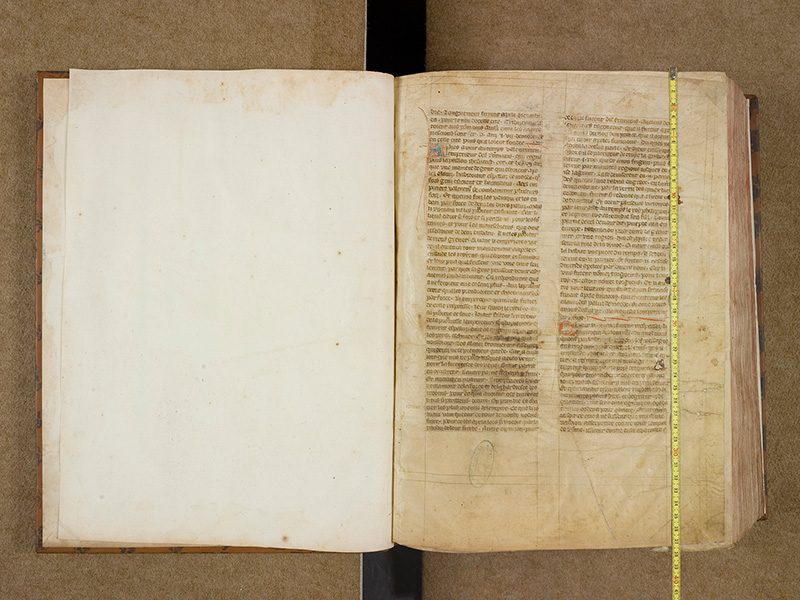 CASTRES, Bibliothèque municipale, 0003, contregarde - 003 avec réglet