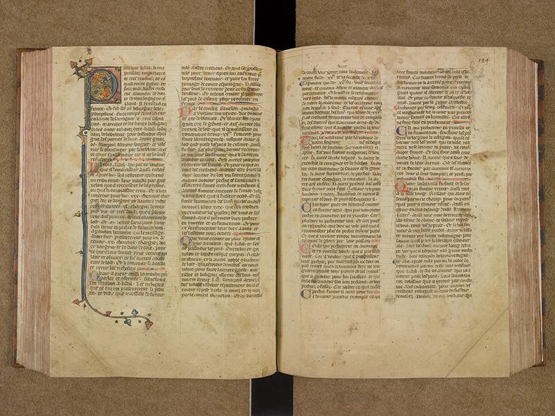 CASTRES, Bibliothèque municipale, 0003, f. 133v - 134