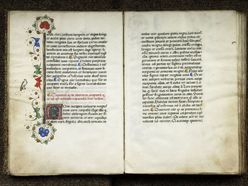 CHANTILLY, Bibliothèque du château, 0368 (1375), f. 006v - 007