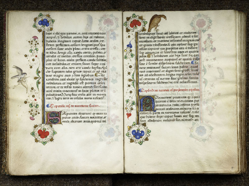 CHANTILLY, Bibliothèque du château, 0368 (1375), f. 008v - 009