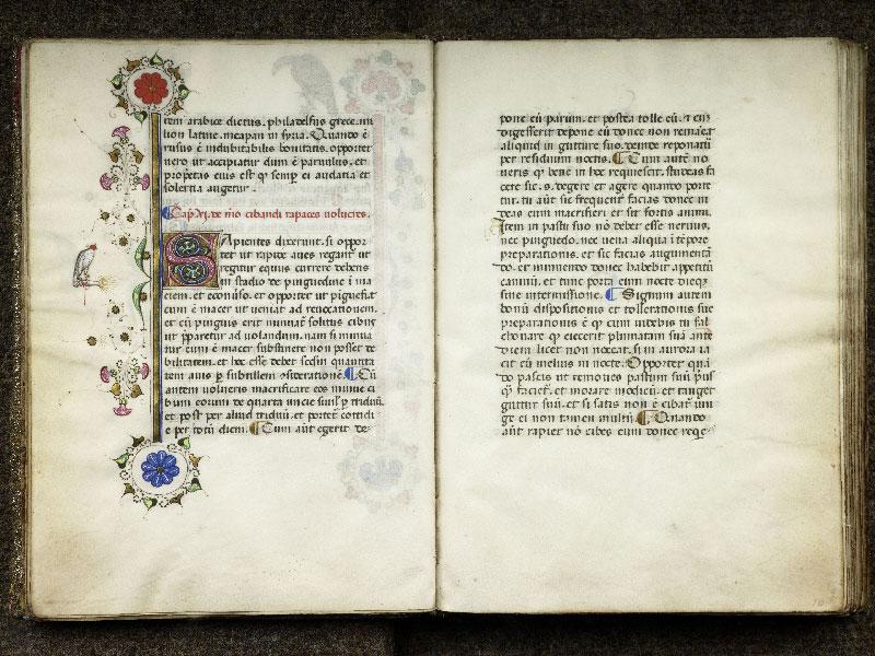 CHANTILLY, Bibliothèque du château, 0368 (1375), f. 009v - 010