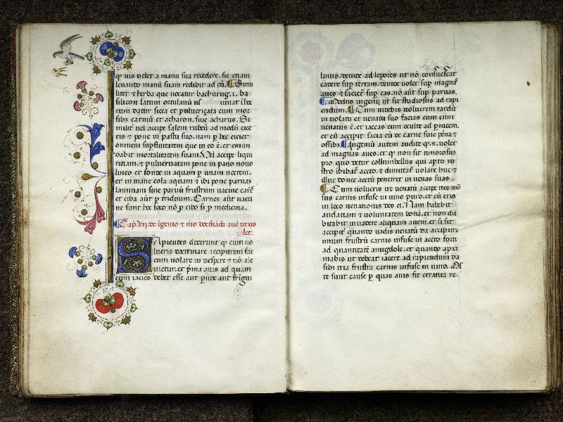 CHANTILLY, Bibliothèque du château, 0368 (1375), f. 012v - 013