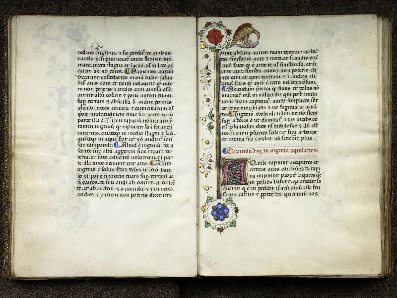 CHANTILLY, Bibliothèque du château, 0368 (1375), f. 013v - 014