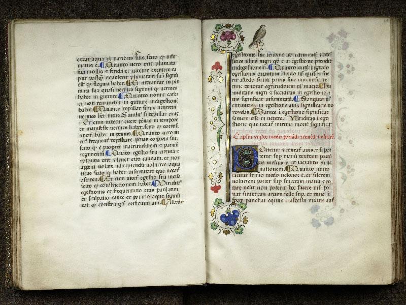 CHANTILLY, Bibliothèque du château, 0368 (1375), f. 020v - 021