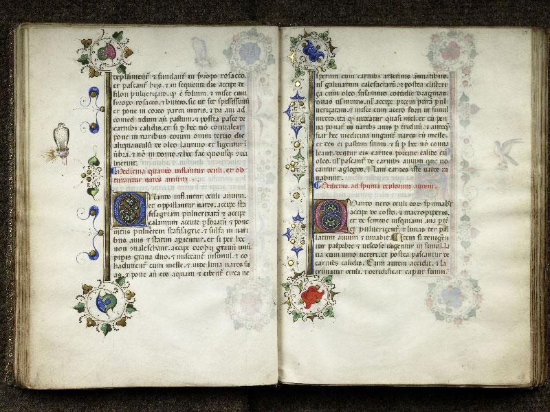 CHANTILLY, Bibliothèque du château, 0368 (1375), f. 028v - 029