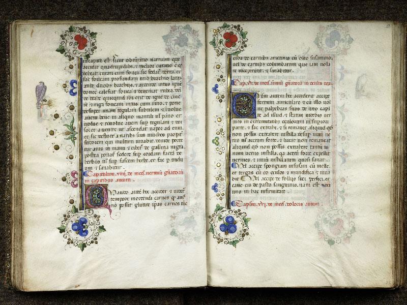 CHANTILLY, Bibliothèque du château, 0368 (1375), f. 032v - 033