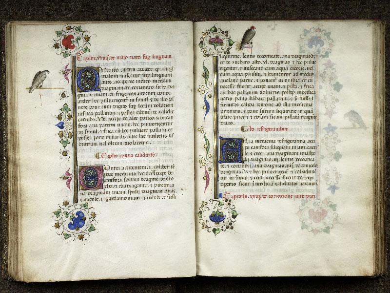 CHANTILLY, Bibliothèque du château, 0368 (1375), f. 034v - 035