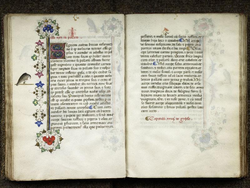 CHANTILLY, Bibliothèque du château, 0368 (1375), f. 035v - 036
