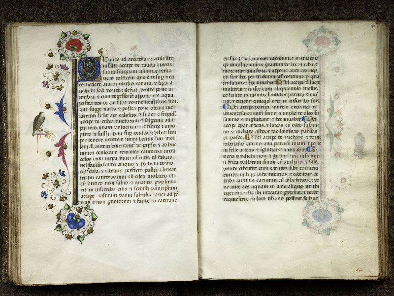 f. 036v - 037, f. 036v - 037