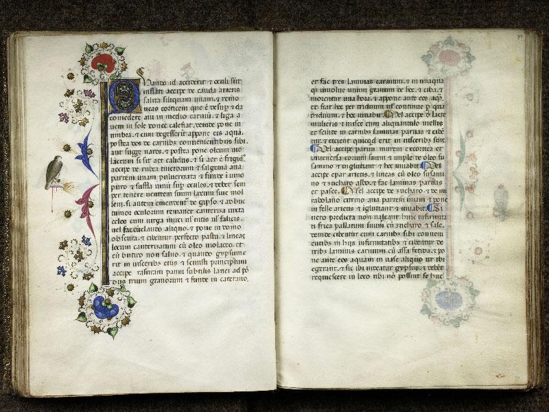 CHANTILLY, Bibliothèque du château, 0368 (1375), f. 036v - 037