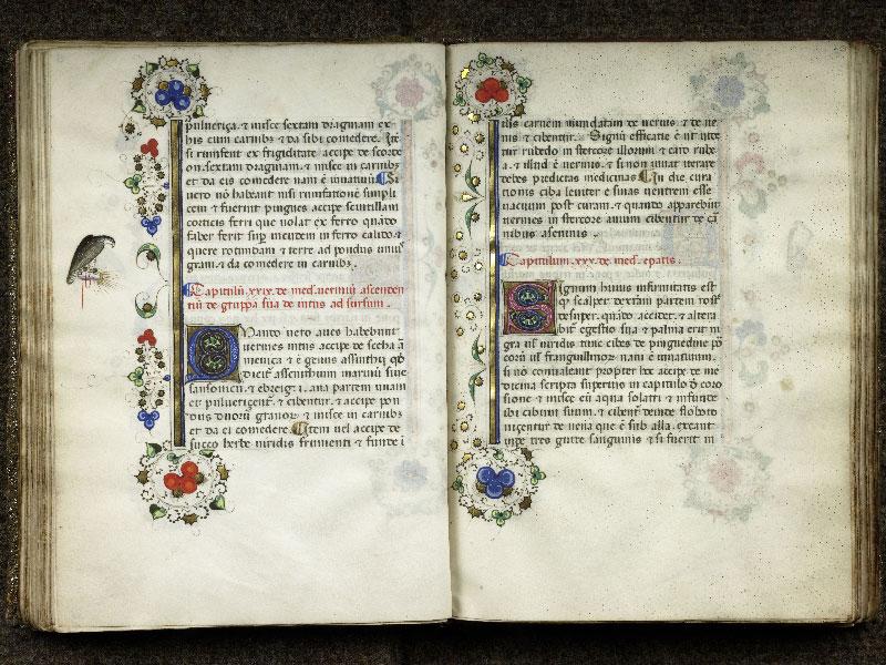 CHANTILLY, Bibliothèque du château, 0368 (1375), f. 039v - 040