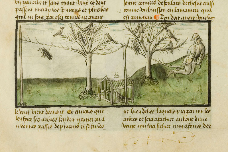 Chantilly, Bibl. du château, ms. 0366 (1559), f. 046v
