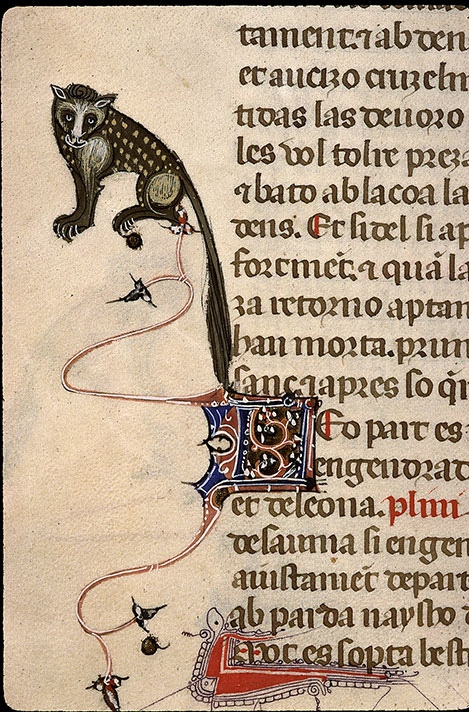 Paris, Bibl. Sainte-Geneviève, ms. 1029, f. 253v