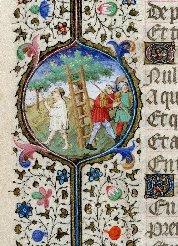 Paris, Bibl. de l'Institut de France, ms. 0547, f. 047v - vue 2