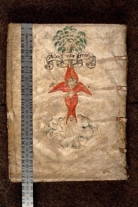 Paris, Bibl. de l'Institut de France, inc. Fol. G 0013, plat inf. - vue 1