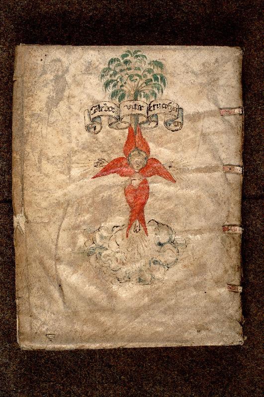 Paris, Bibl. de l'Institut de France, inc. Fol. G 0013, plat inf. - vue 2