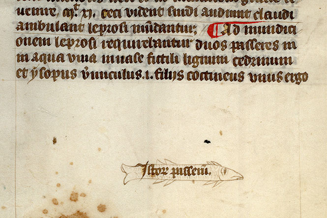 Paris, Bibl. Mazarine, ms. 0291, f. 036v
