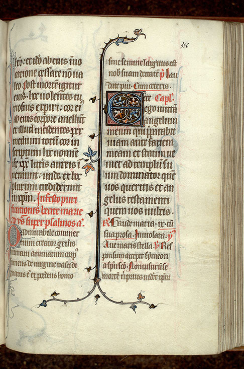 Paris, Bibl. Mazarine, ms. 0356, f. 356