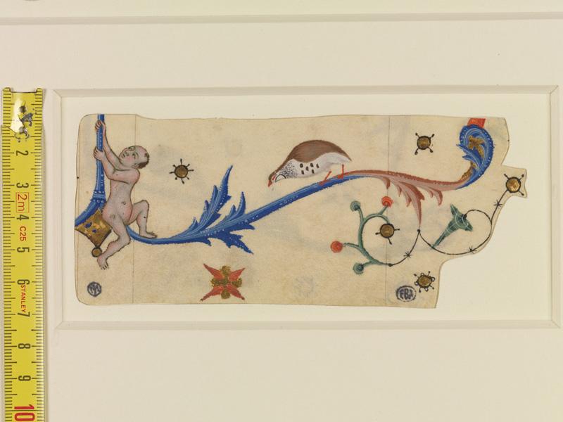PARIS, Bibliothèque de l'Ecole des Beaux-Arts, Mn.Mas 0140, vue 12