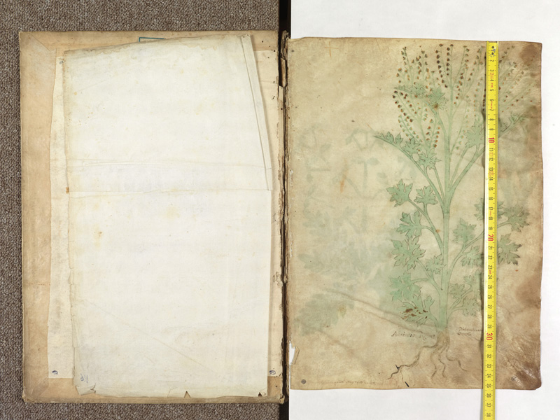 PARIS, Bibliothèque de l'Ecole des Beaux-Arts, Ms.Mas 0116, contregarde - 001 avec réglet
