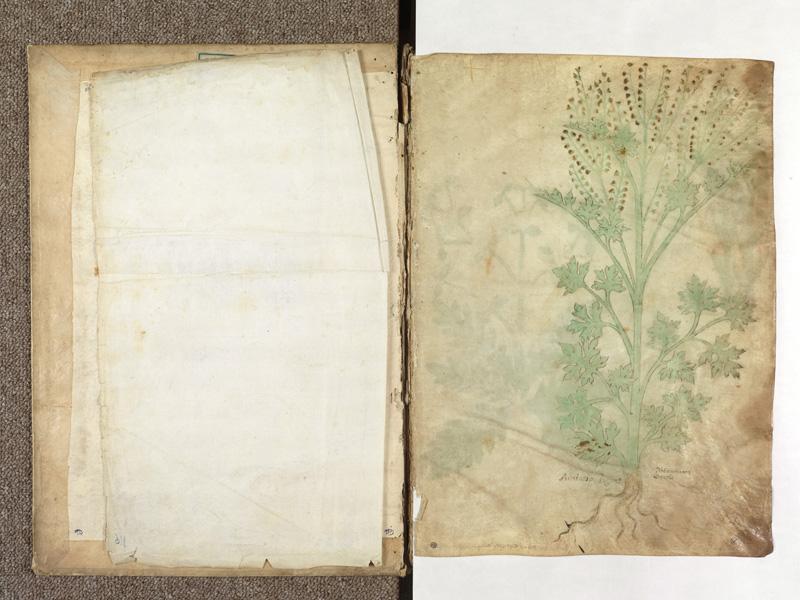 PARIS, Bibliothèque de l'Ecole des Beaux-Arts, Ms.Mas 0116, contregarde - 001