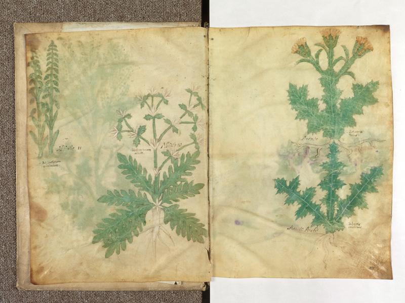 PARIS, Bibliothèque de l'Ecole des Beaux-Arts, Ms.Mas 0116, f. 001v - 002