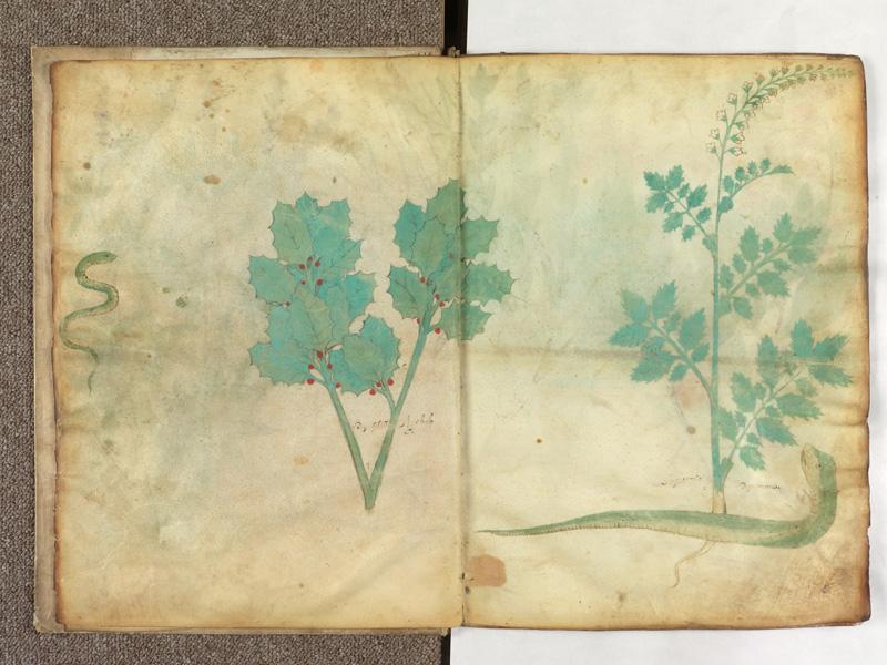PARIS, Bibliothèque de l'Ecole des Beaux-Arts, Ms.Mas 0116, f. 005v - 006