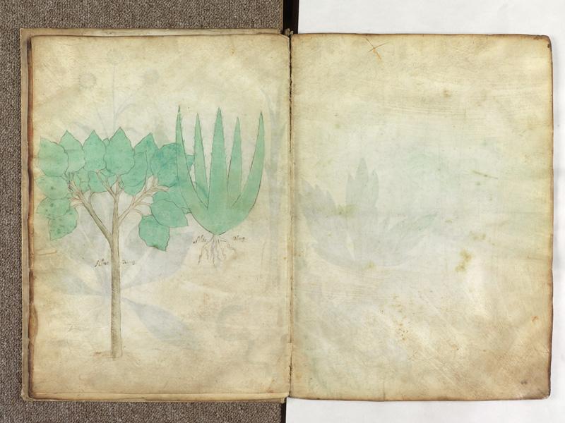 PARIS, Bibliothèque de l'Ecole des Beaux-Arts, Ms.Mas 0116, f. 008v - 009